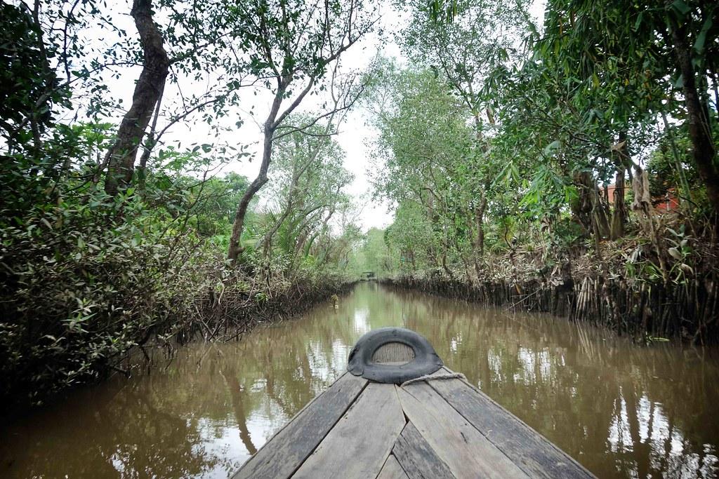 Delta - Mangrove