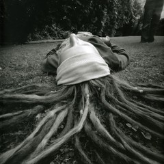 Roots - pinhole | by Kate Kirkby