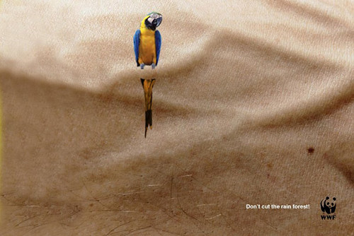 WWF - Don't cut the rain forest | by Marketing Post
