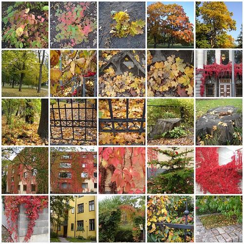 Ruska Autumn 2006 in Helsinki