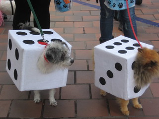 Pet Hideaway Halloween Pet Costume Contest | by Seaport Village