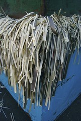 Shredded Paper | by Peat Bakke