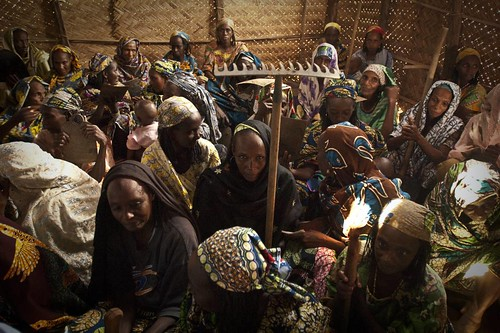 Silent Success: Mbororo Refugees in Cameroon | by UNHCR