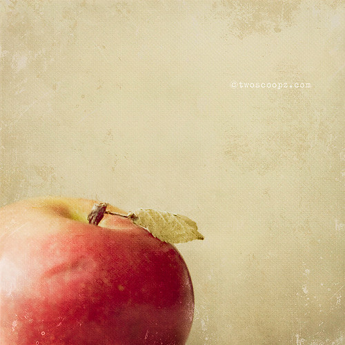 an apple a day 294/365 | by jan@ShinePhotoDesign
