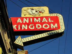 Animal Kingdom Sign | by pixeljones