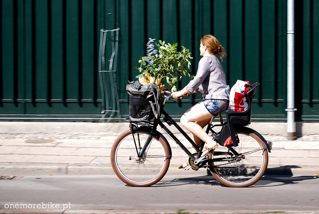 Jak coś przewieźć rowerem - How to carry your stuff on a bike