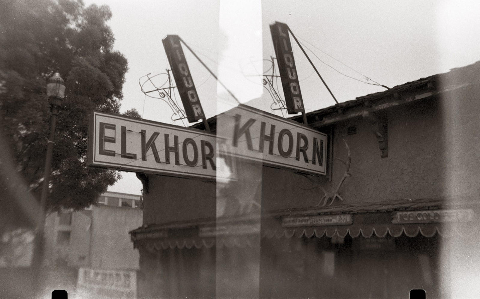 Elkhorn | by efo