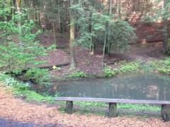 MGap Pond