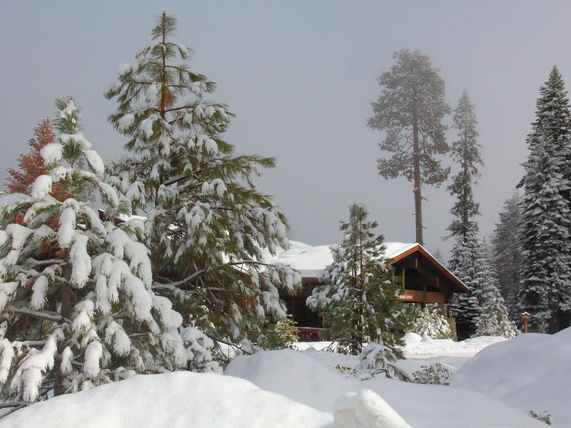 IMG_2466 Wuksachi Lodge