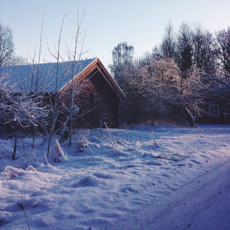 Snow, Julita