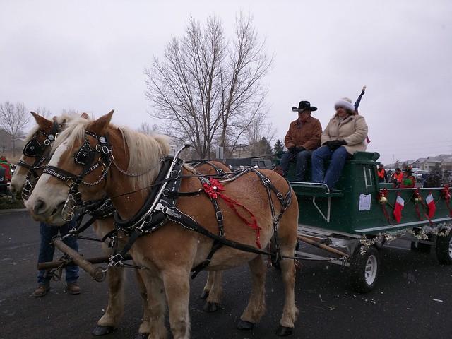 Parker Christmas Parade 2015