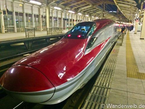 japanrailPass (4 von 7)