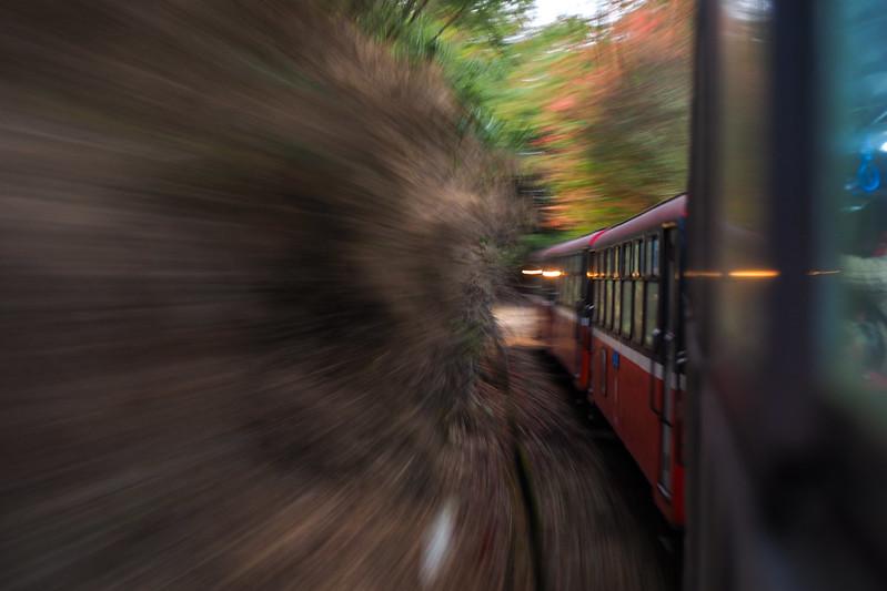 阿里山 森林小火車|Zonlai 25mm f/1.8