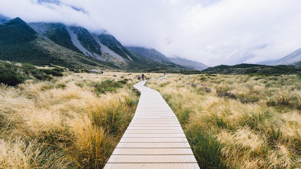 Mountain trail 山野步道