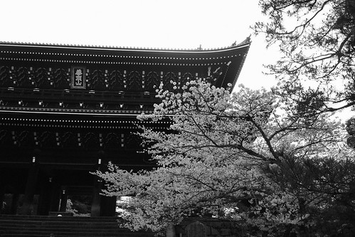 Chion-in Temple, Kyoto on APR 06, 2016 (5)