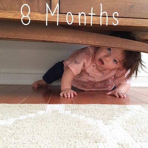 Elle Evergreen: 8 months