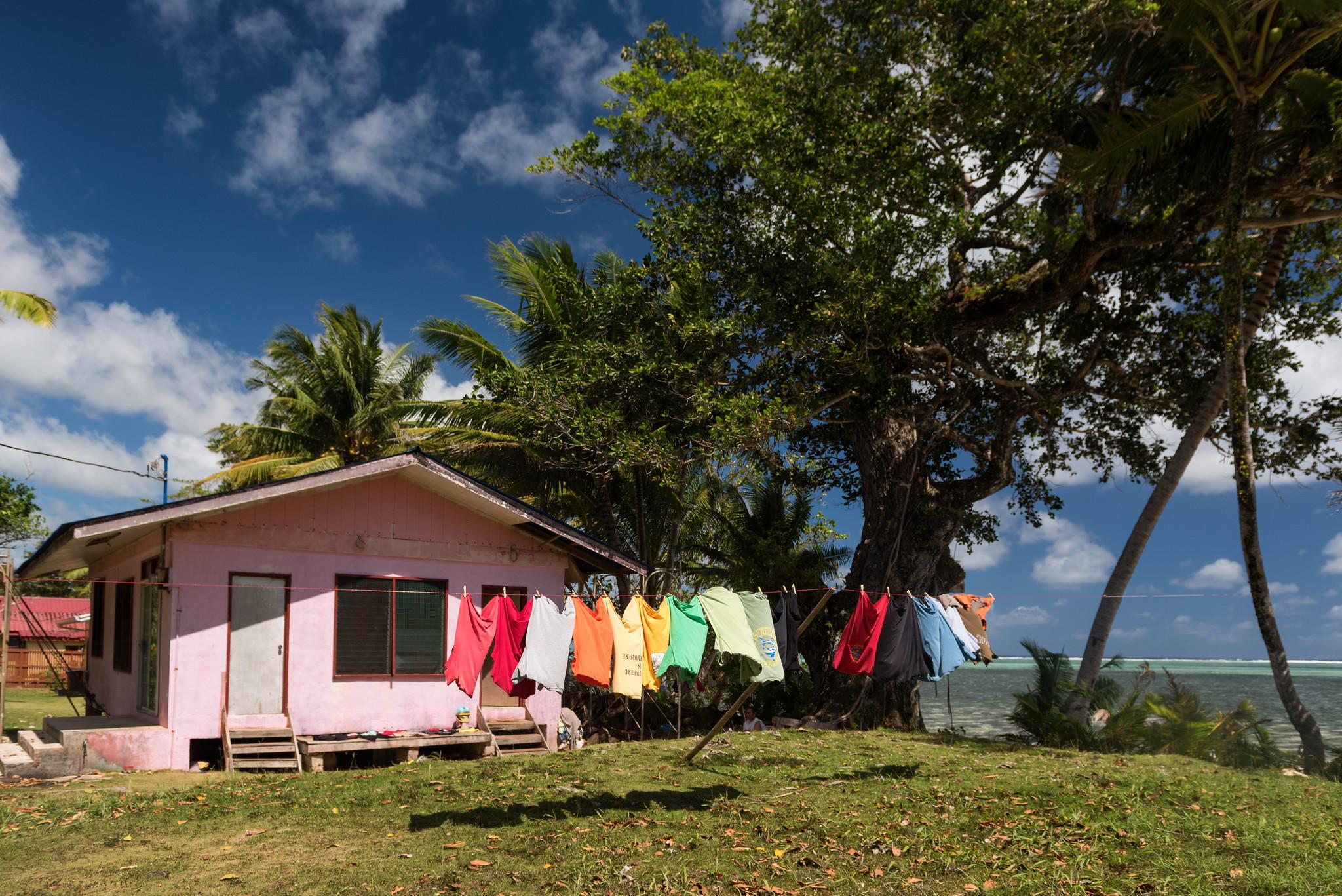 Palauan Backyard