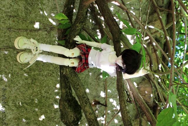 La clique de 'Kaya-Kit raclette, Noctali et pyjama étoilé p5 - Page 2 26089241775_c047248ec3_o