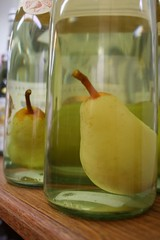 Pear Brandy | by Maggie Mason (Mighty Girl)