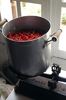red currants in pot | by David Lebovitz