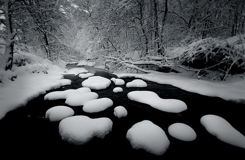New Snow, Taylor Creek | by Peter Bowers