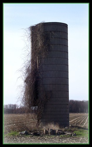 ...Solo Silo... | by KT of Lake Orion