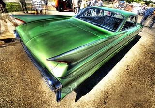 Green Fins in Austin | by Stuck in Customs
