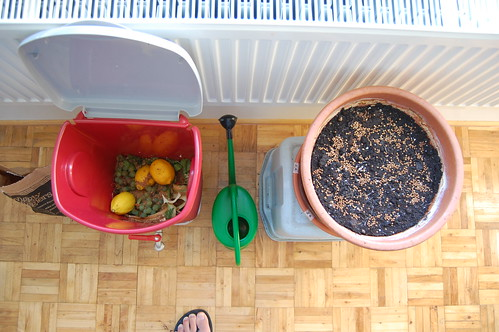 indoor composting and gardening | by mathiasbaert