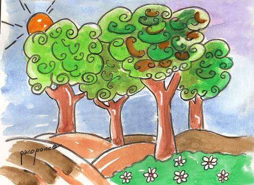 Rboles de hoja perenne paseando por el jard n el campo for Arboles de jardin de hoja perenne