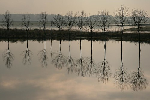 reflection 3 | by Photos Marlies