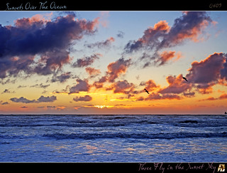 Three Fly in the Sunset Sky - (Sunsets Over The Ocean I) | by tomraven