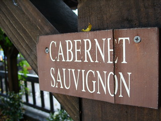 Cabernet sauvignon | by timbrauhn