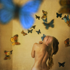 an asylum for metamorphosis | by brookeshaden