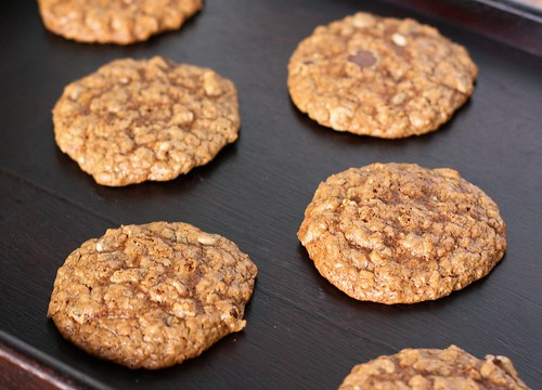 2009.11.18 Espresso Chip Oatmeal Cookies | by Xiaolu // 6 Bittersweets