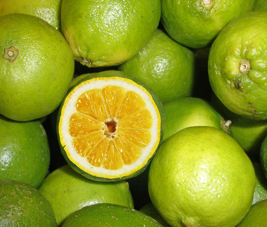 Limes Altered