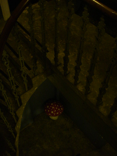 Dark stairwells perfect for growing 2ft paper mache mush for Perfect paper mache