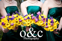 Daffodil bouquets | by o&c Photography