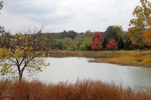 Morton Arboretum 2013