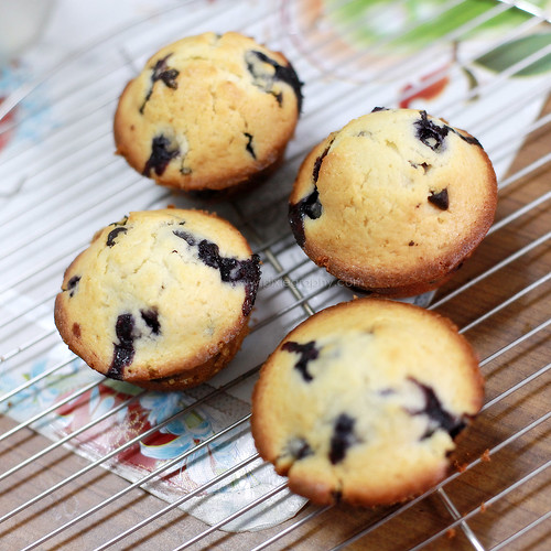 Blueberry & chocolate chip muffin
