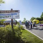 Bogfest 2014