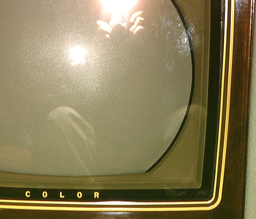 RCA Victor Super Color Television, 1962 (Detail