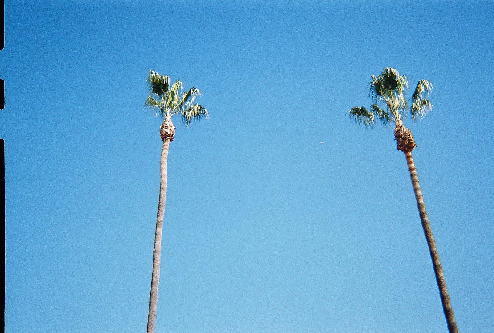 Lisa Hiatt Flickr