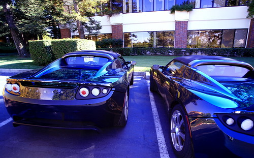 Two Teslas in the Wild | by jurvetson