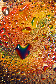 Dew Loves You | by Michelle in Ireland