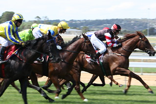 Horse Racing at Mornington | by Jessica M. Cross