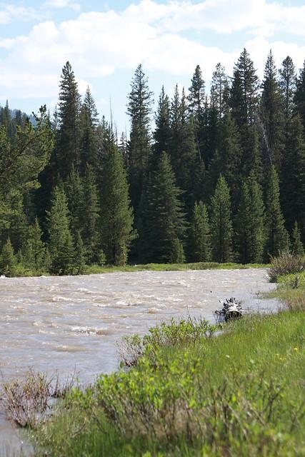 Montana June 208 060