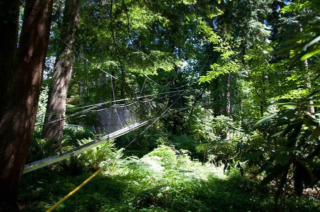 UBC Botanical Garden-6