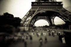 eiffel tower | by boston wedding photographer lisa rigby
