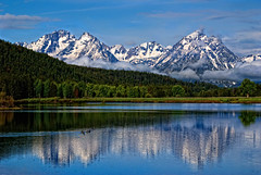 Tetons and Ducks | by Bill Wight CA