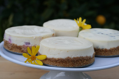 Mini Cheesecakes | by Food Librarian